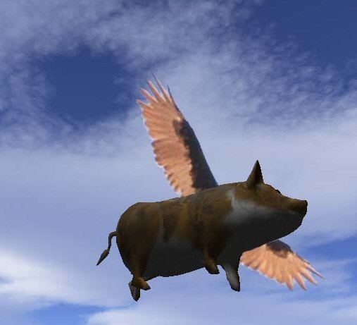Catch a Flying Pig